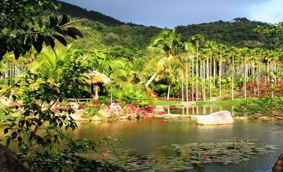 呀诺达雨林风景区